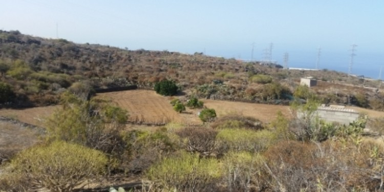 Land for Sale, Chio, Tenerife - SA-12037 8