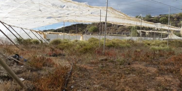 3 Bed  Land for Sale, Guía de Isora, Tenerife - SA-12041 6