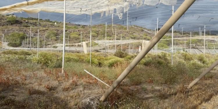 3 Bed  Land for Sale, Guía de Isora, Tenerife - SA-12041 7
