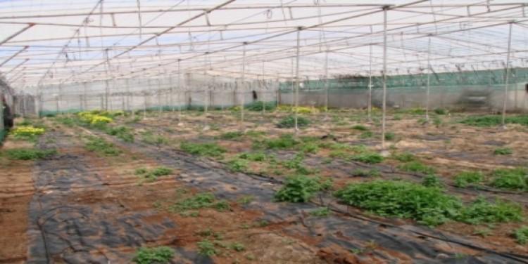 1 Bed  Land for Sale, Puerto Santiago, Tenerife - SA-12040 13