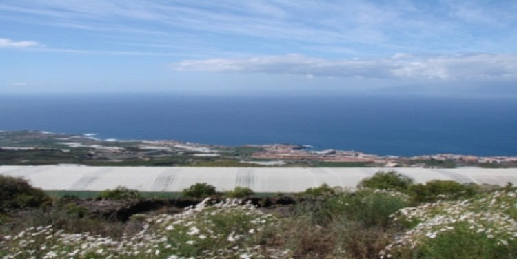 1 Bed  Land for Sale, Puerto Santiago, Tenerife - SA-12040 19