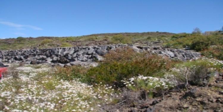 1 Bed  Land for Sale, Puerto Santiago, Tenerife - SA-12040 9