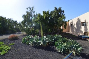 6 Bed  Country House/Finca for Sale, Tuineje, Las Palmas, Fuerteventura - DH-VPTFRTU-48