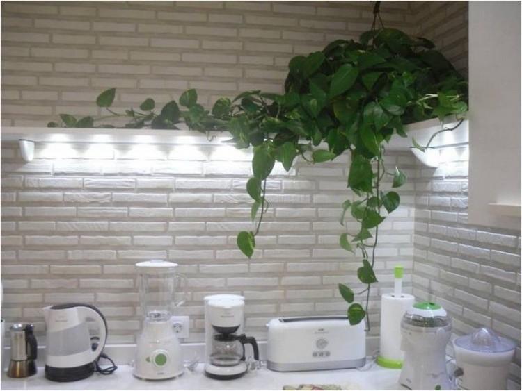 2 Bed  Villa/House for Sale, Costa Calma, Las Palmas, Fuerteventura - DH-VPTDXCC-38 13