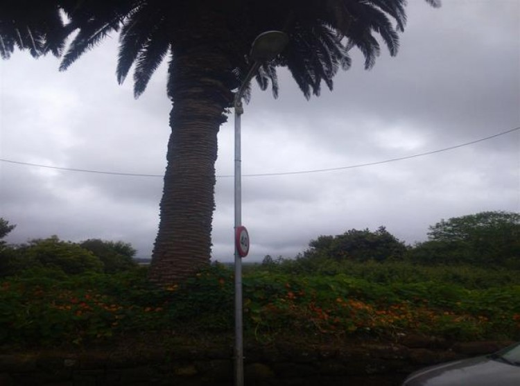 Land for Sale, San Cristobal De La Laguna, Tenerife - PG-LA113 3