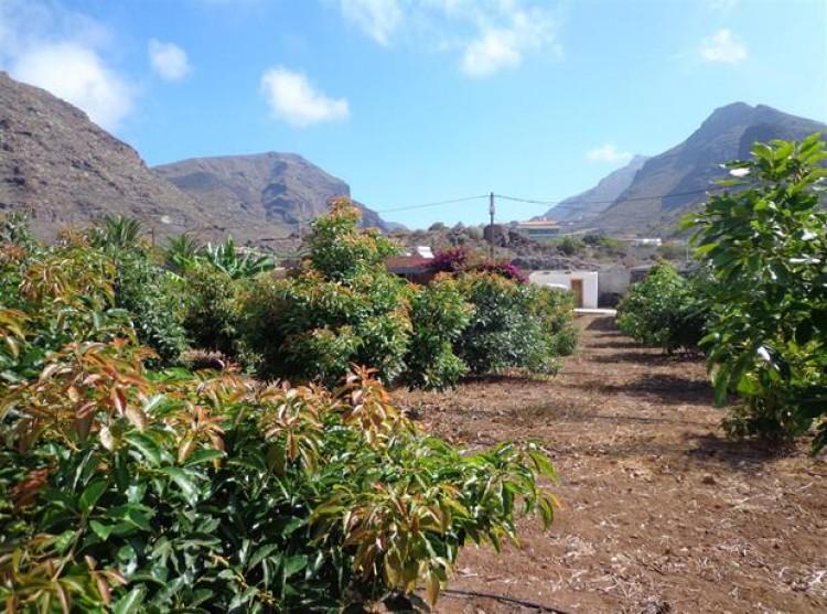 2 Bed  Property for Sale, Acantilado De Los Gigantes, Tenerife - PG-C1774 11