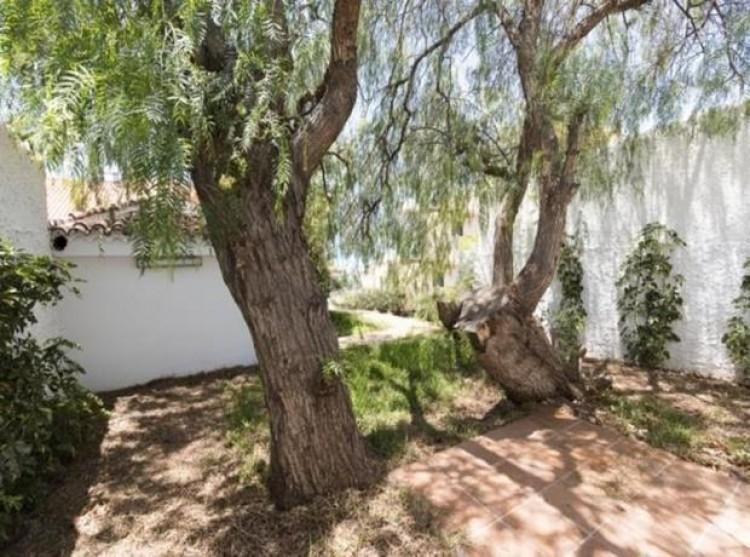 4 Bed  Villa/House for Sale, Radazul, Tenerife - PG-D1673 13