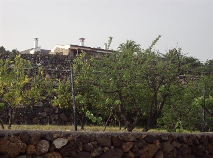 2 Bed  Property for Sale, Cruz De Tea (Granadilla), Tenerife - PG-C1351 12