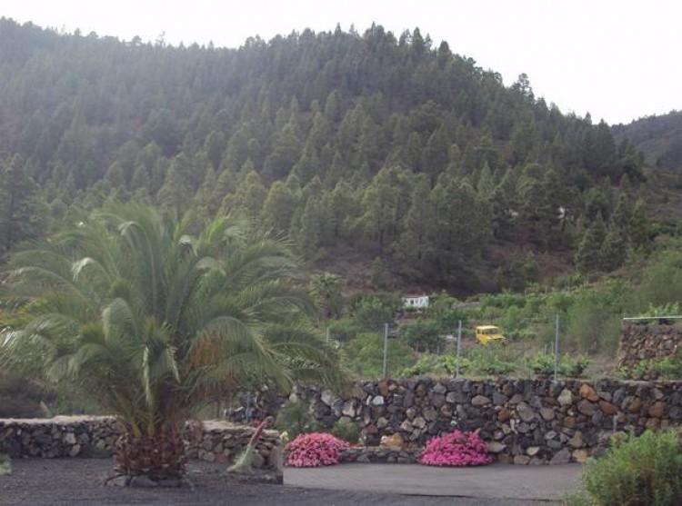 2 Bed  Property for Sale, Cruz De Tea (Granadilla), Tenerife - PG-C1351 13
