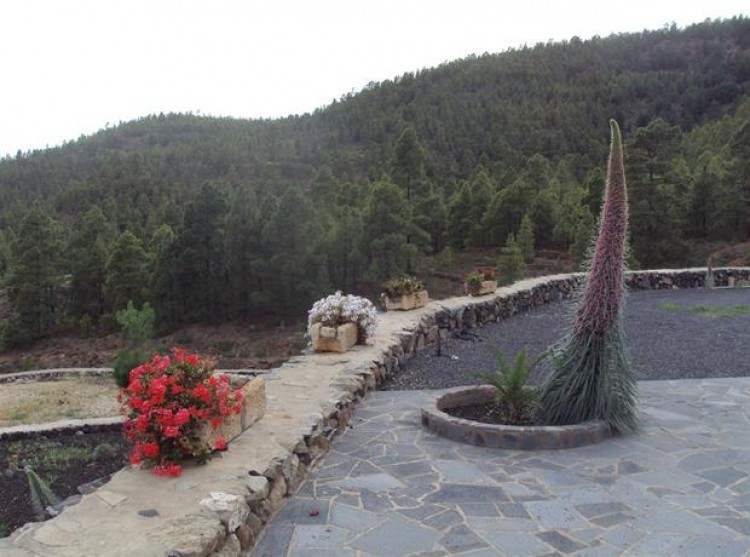 2 Bed  Property for Sale, Cruz De Tea (Granadilla), Tenerife - PG-C1351 14