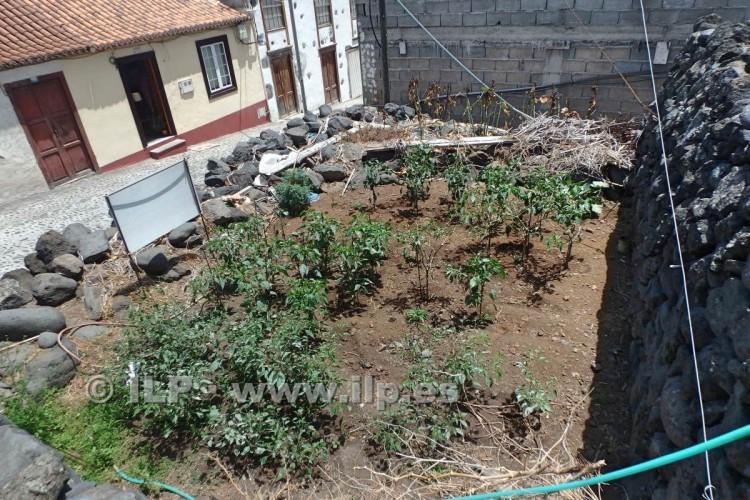 Villa/House for Sale, San Andrés, San Andrés y Sauces, La Palma - LP-LS02 4