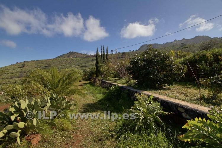 4 Bed  Villa/House for Sale, Cueva de Agua, Garafía, La Palma - LP-G47 12