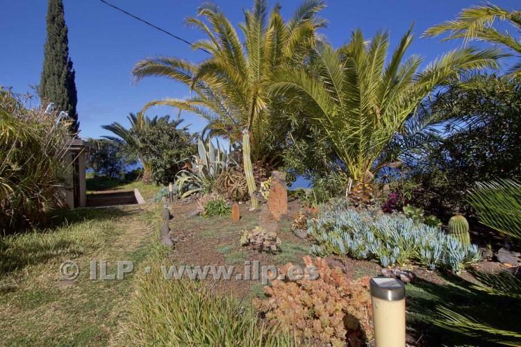 4 Bed  Villa/House for Sale, Cueva de Agua, Garafía, La Palma - LP-G47 15