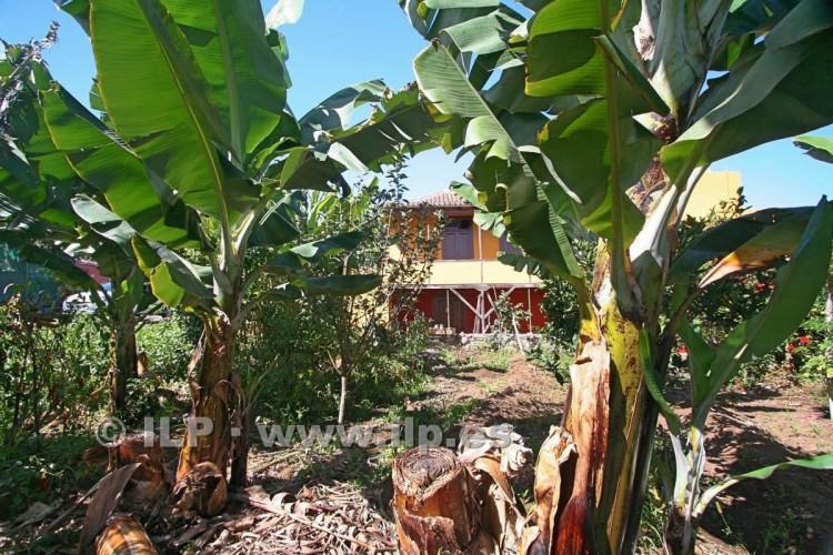 Villa/House for Sale, Los Lomitos, San Andrés y Sauces, La Palma - LP-LS01 19