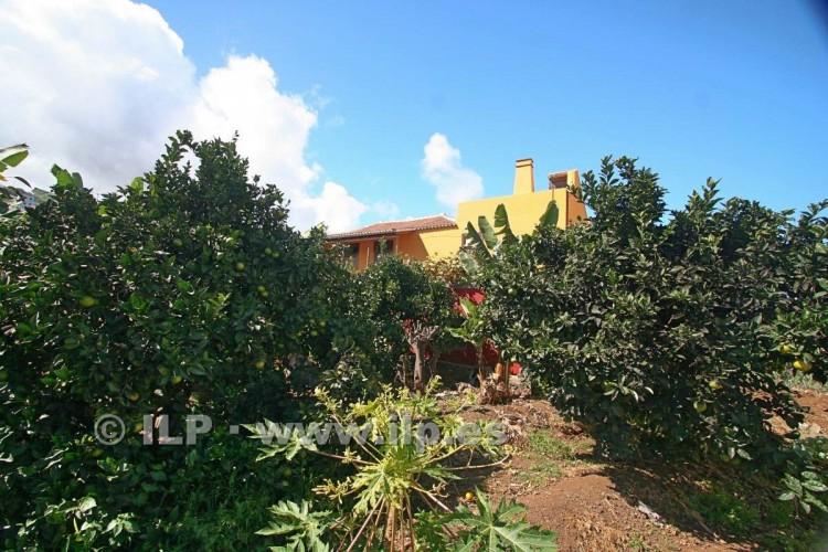 Villa/House for Sale, Los Lomitos, San Andrés y Sauces, La Palma - LP-LS01 5