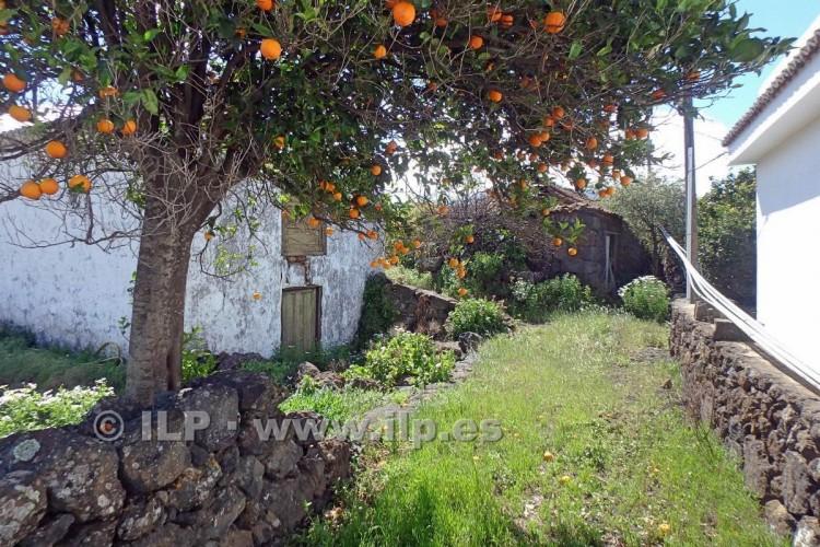 Villa/House for Sale, La Rosa, El Paso, La Palma - LP-E556 6