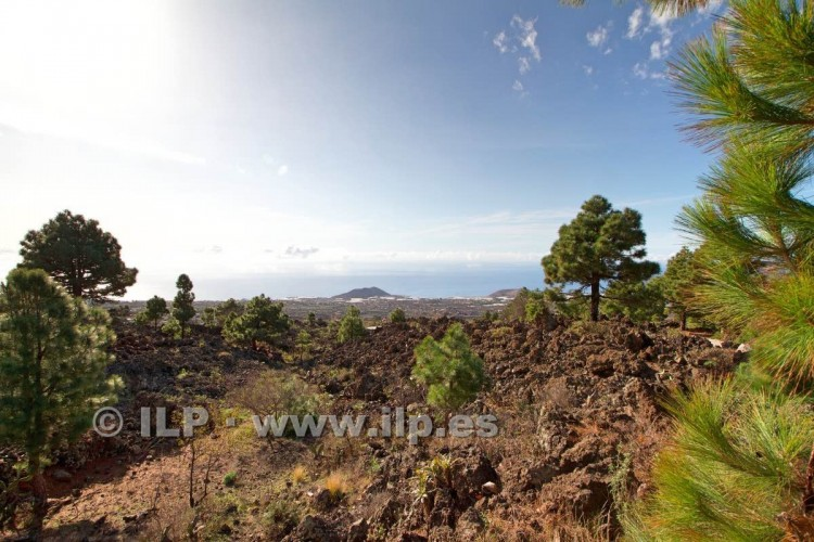 Villa/House for Sale, Tacande, El Paso, La Palma - LP-E544 12