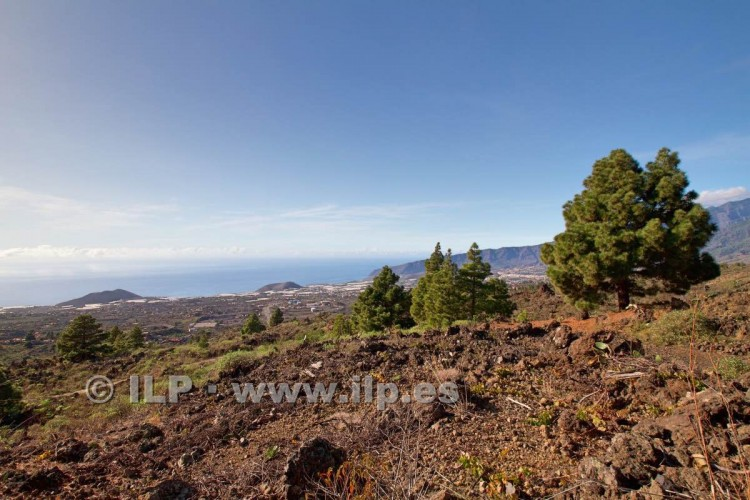 Villa/House for Sale, Tacande, El Paso, La Palma - LP-E544 16