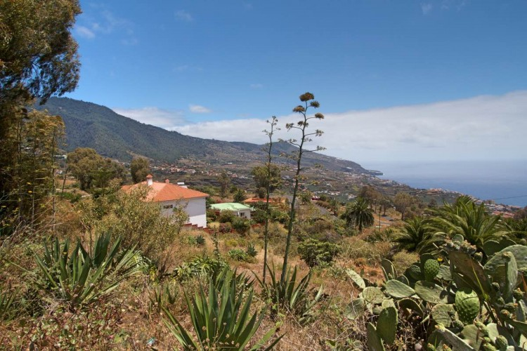 Villa/House for Sale, Buenavista, Breña Alta, La Palma - LP-BA42 1