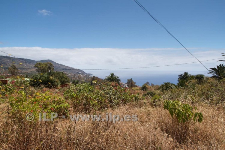 Villa/House for Sale, Buenavista, Breña Alta, La Palma - LP-BA42 13