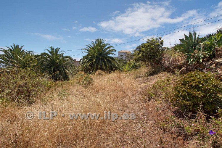 Villa/House for Sale, Buenavista, Breña Alta, La Palma - LP-BA42 14