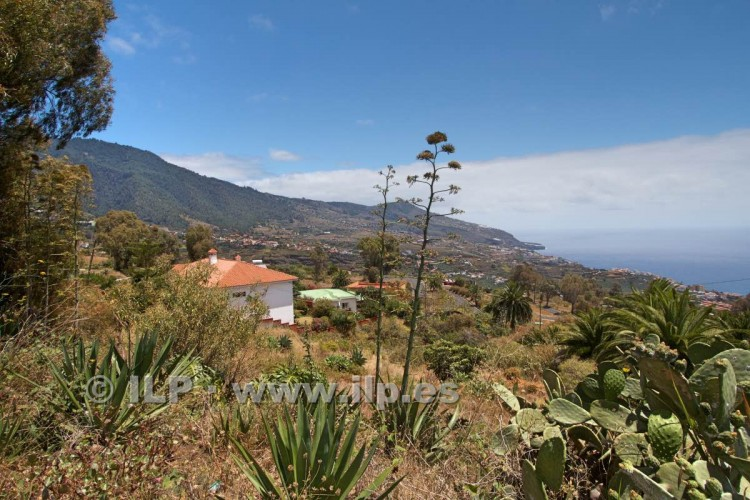 Villa/House for Sale, Buenavista, Breña Alta, La Palma - LP-BA42 2