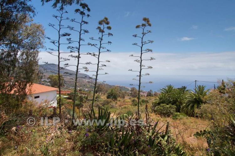 Villa/House for Sale, Buenavista, Breña Alta, La Palma - LP-BA42 5