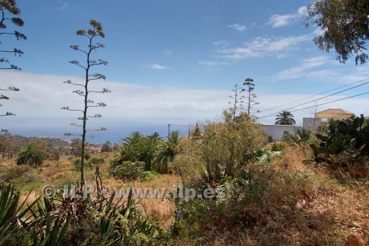 Villa/House for Sale, Buenavista, Breña Alta, La Palma - LP-BA42 6