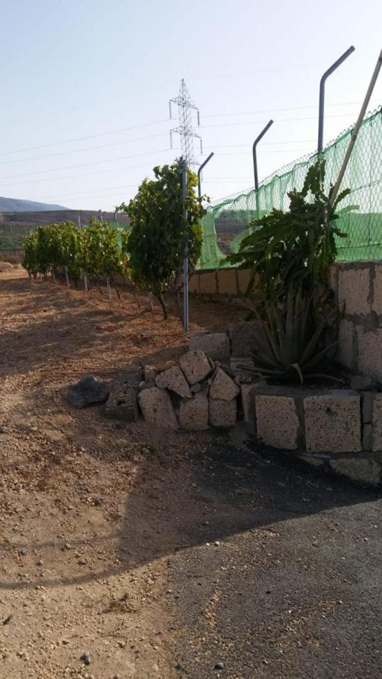 Land for Sale, Arico, Santa Cruz de Tenerife, Tenerife - IN-183 6