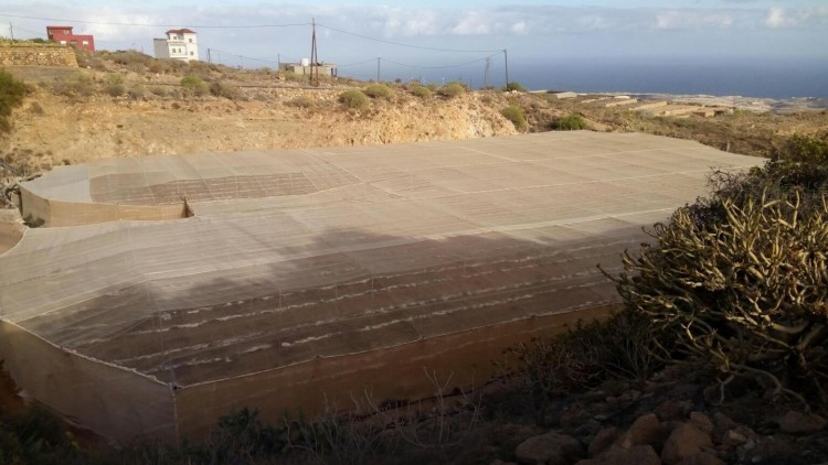 Land for Sale, Arico, Santa Cruz de Tenerife, Tenerife - IN-71 3
