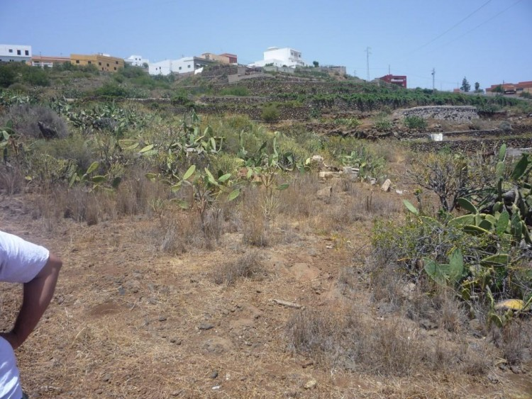 Land for Sale, Granadilla de Abona, Santa Cruz de Tenerife, Tenerife - IN-62 6