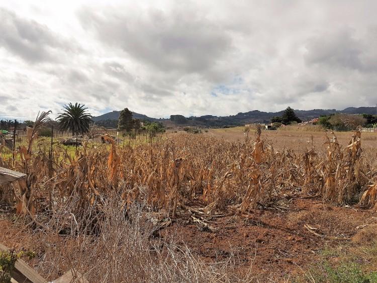 Land for Sale, San Cristóbal de la Laguna, San Cristobal de La Laguna, Tenerife - VC-2794 11