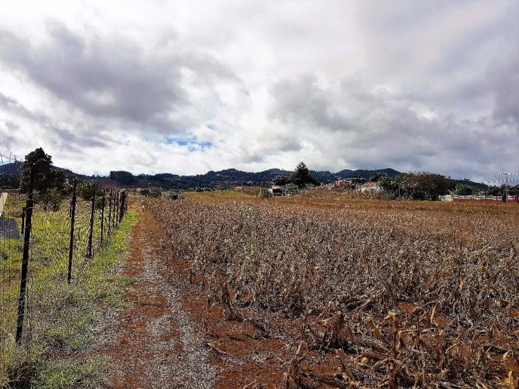 Land for Sale, San Cristóbal de la Laguna, San Cristobal de La Laguna, Tenerife - VC-2794 7