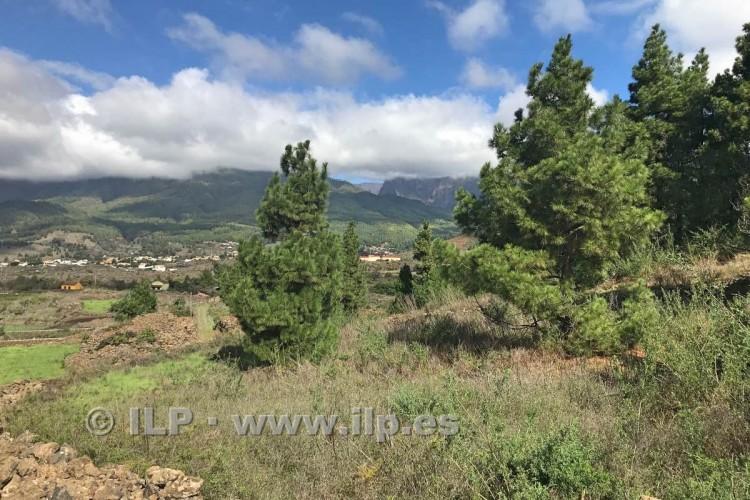 Villa/House for Sale, Piedras Blancas, El Paso, La Palma - LP-E590 3