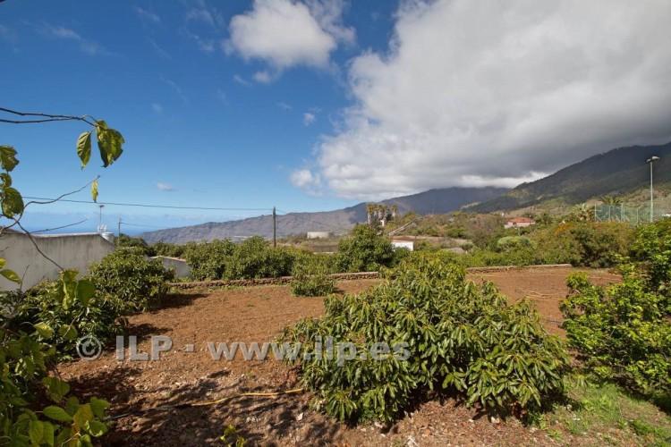 Villa/House for Sale, Tajuya, El Paso, La Palma - LP-E597 17