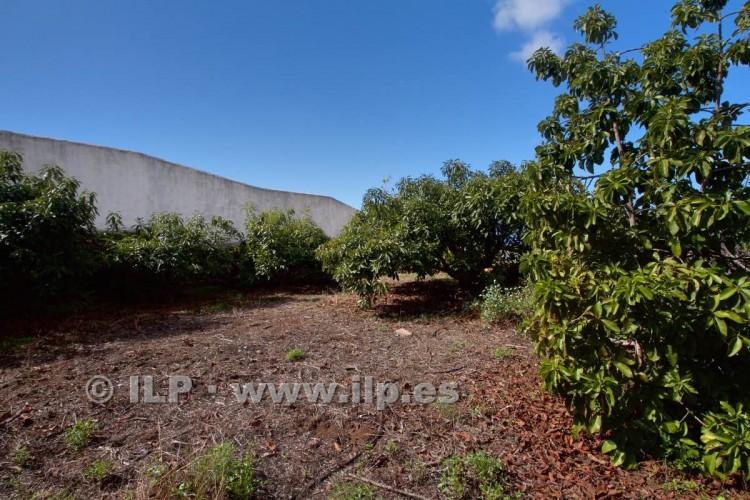 Villa/House for Sale, Tajuya, El Paso, La Palma - LP-E597 18