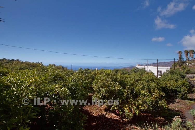 Villa/House for Sale, Tajuya, El Paso, La Palma - LP-E597 5