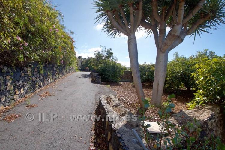 Villa/House for Sale, Tajuya, El Paso, La Palma - LP-E597 6