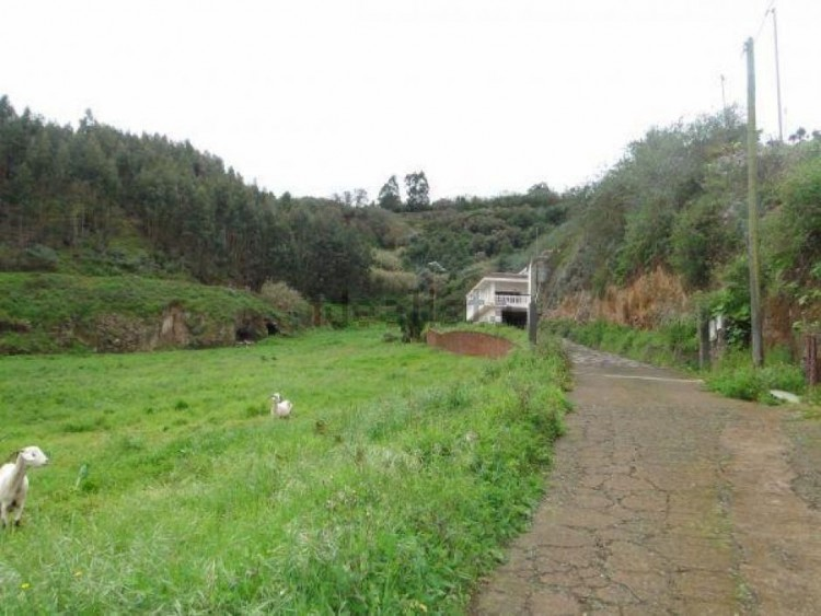 2 Bed  Villa/House for Sale, Las Palmas, Moya-Santa Maria de Guia, Gran Canaria - DI-11027 1