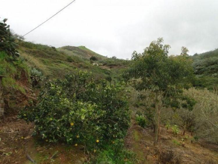2 Bed  Villa/House for Sale, Las Palmas, Moya-Santa Maria de Guia, Gran Canaria - DI-11027 13