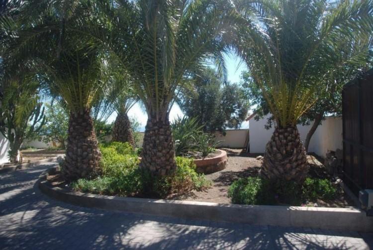 4 Bed  Villa/House for Sale, Las Palmas, San Bartolomé Interior, Gran Canaria - DI-6995 18