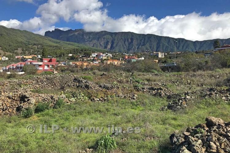 Villa/House for Sale, In the outskirts, El Paso, La Palma - LP-E601 4