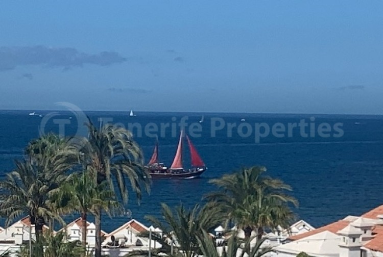 1 Bed  Flat / Apartment for Sale, Playa Fañabe, Tenerife - TP-7826 4